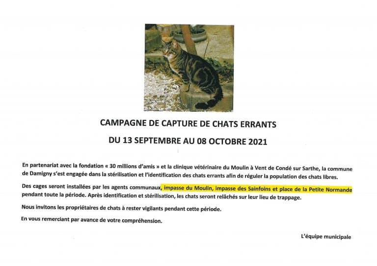 Campagne de capture de chats errants du 13 septembre au 8 octobre 2021